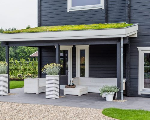 Modern grey wooden house with yellow blooming rooftop with sempervivum