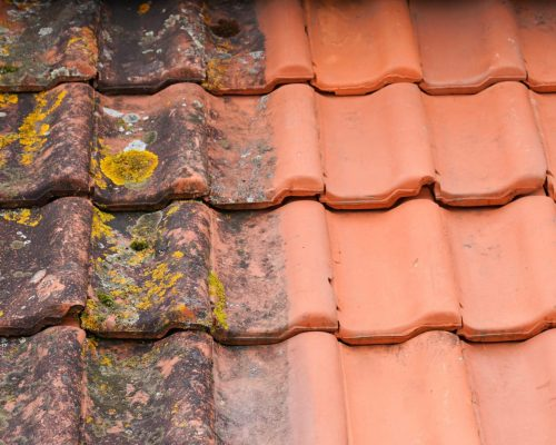 Comparison roof top before and after cleaning moss lichen high pressure water cleaner tile